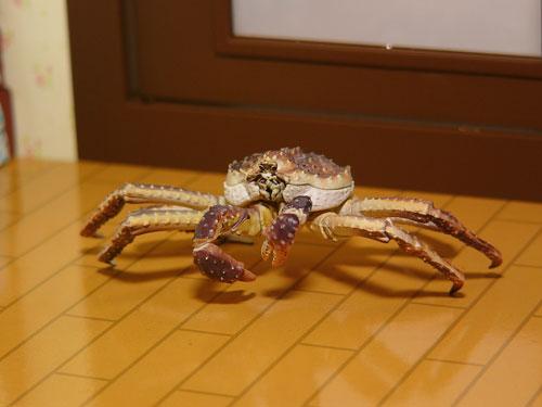 Juvisy_crab02