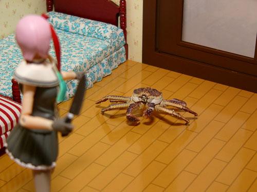 Juvisy_crab03